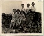 1938 le tas de bois_collection Marie-Paule Léveillé