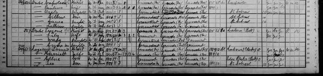 zoom recensement 1900