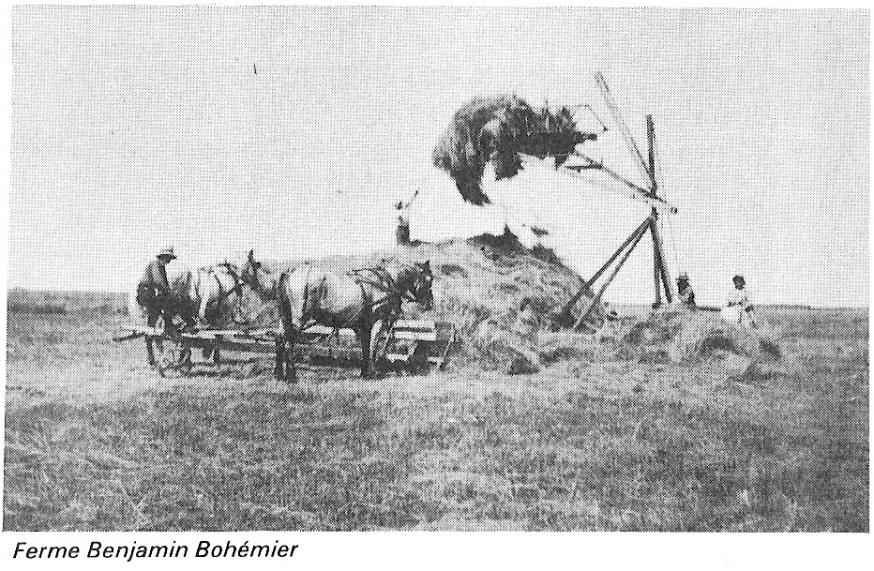 ferme de Benjamin Bohémier